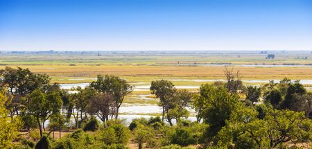 chobe national park: Landscape view of Chobe National Park near Kasane, Botswana, Africa Stock Photo