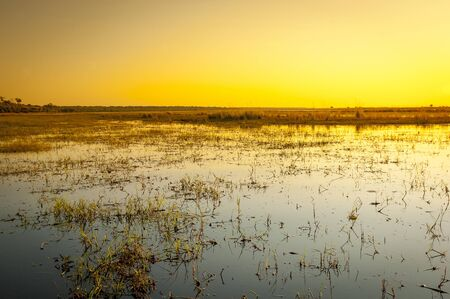 chobe national park: Chobe River in Botswana, Africa at sunset from water level