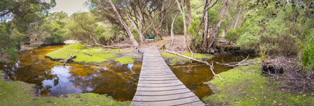 wilsons promontory: Panorama of Refuge Cove Campground in Wilsons Promontory National Park, Victoria, Australia