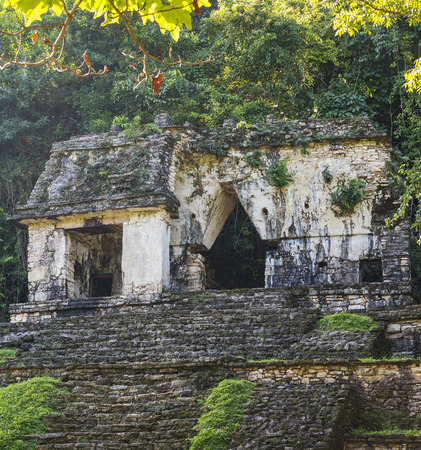 PALENQUE, MEXICO - NOVEMBER 29: Ancient ruins of the Temple of the Skull surrounded by lush jungle on November 29, 2016 in Palenque. Palenque was declared a world heritage site by UNESCO in 1987.
