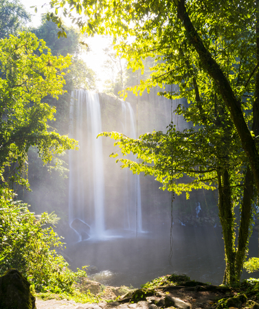 Misol Ha waterfall surrounded by forest near Palenque in Chiapas, Mexico Stock Photo