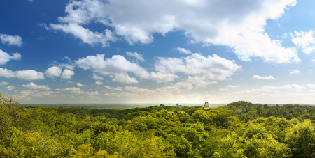 Panorama of the Mayan city of Tikal, Guatemala