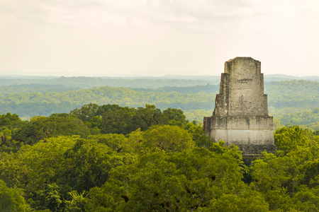 Tikal ruins in Guatemala with thick tropical jungle