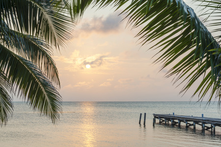 Tropical sunrise over a wooden jetty with palm tree