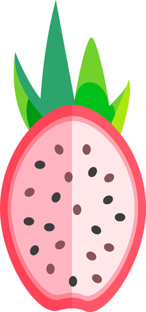 Dragon fruit or pitaya fruit cut in half in flat design vector style isolated