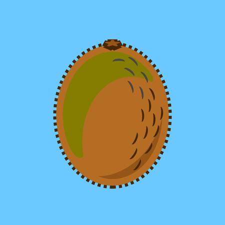 Kiwi fruit or kiwifruit vector in a simple minimalism art style Illustration
