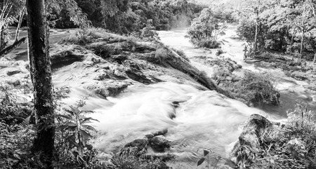 Landscape View of Agua Azul waterfall near Palenque in Chiapas, Mexico in black and white