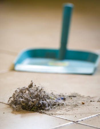 Dustpan and brush sweeping up dust on the floor at home