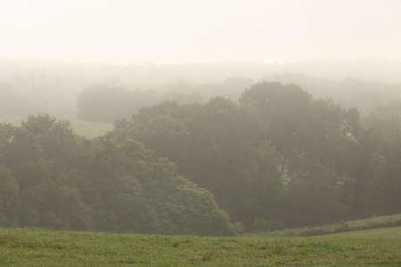Foggy Landschap