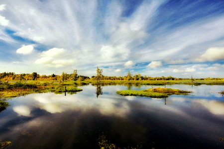 spanish landscapes: Swamplands