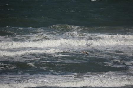 atlantic: Atlantic Ocean