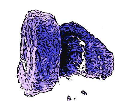 purple taro cream roll cake