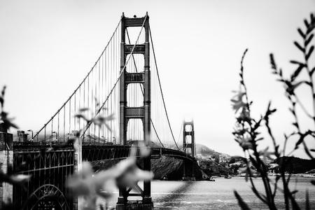 golden gate: The Golden Gate bridge,San Francisco,USA