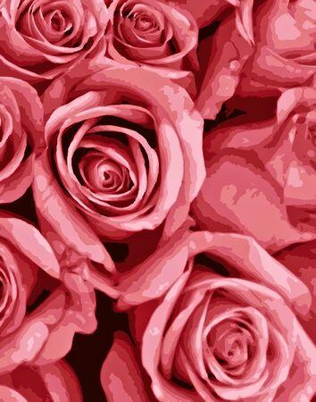 당신의 사랑 하나에 대한 로맨틱 한 핑크 장미 스톡 콘텐츠
