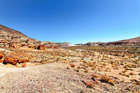 red rock: landscape at Red Rock Canyon, USA in summer