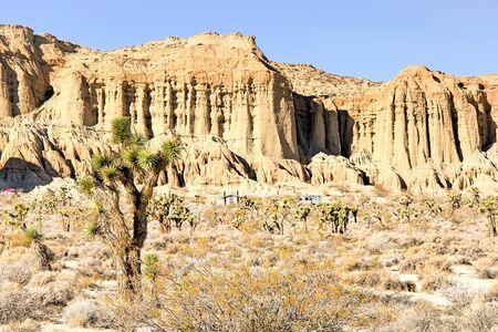 red rock canyon: desert view at Red Rock Canyon, California, USA