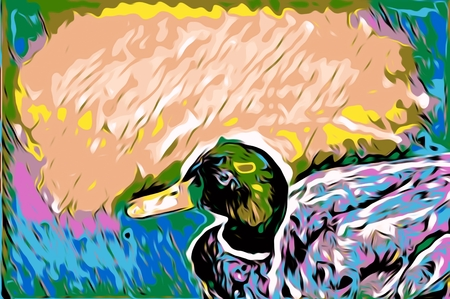 duck green: mallard duck with yellow green pink and blue abstract background