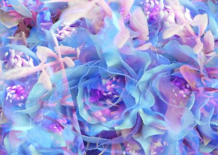blooming blue rose texture abstract background