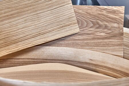 Ash and oak veneer in a roll in process of production in workshop. Wood texture. Furniture manufacture. Close-up Imagens