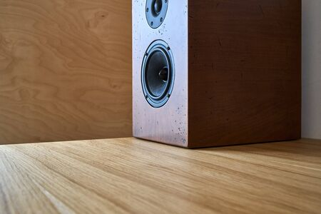 DIY bookshelf speaker standing on a table against the plywood wall