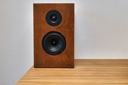 DIY bookshelf speaker standing on a table against a white wall