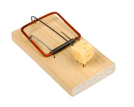 Mousetrap photo