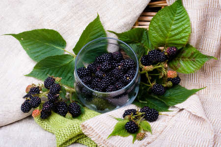 blackberry fruit: Blackberry