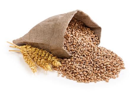 袋に小麦 写真素材