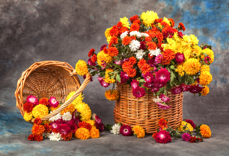 Autumn still life. Flower, fruit and vegetables.