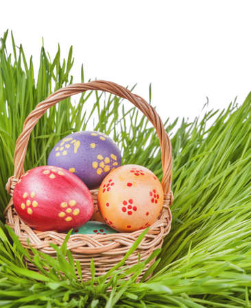 eggs in basket on green grass isolated. easter concept.