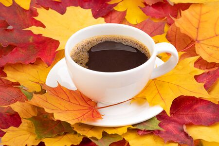 Coffee in a cup and autumn maple leaves
