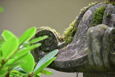 Japanese Pagoda Stok Fotoğraf