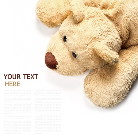 toy bear: brown bear lying on a white background (with sample text) Stock Photo