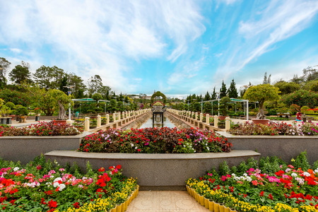 path to romance: Colorful spring summer park with flowers in sunny day