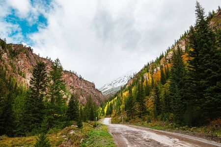 Panorama of road to the gorge of mountains on background of beautiful snowy mountain peaks in cloudy weather. Mountain road in the forest. View of trail on the background of blue sky.