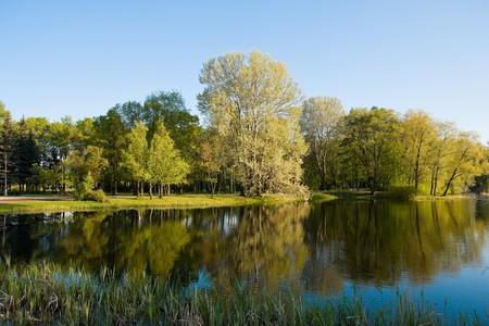reflexion: Parque en el oto�o. Reflexi�n en agua, �rboles, el cielo.
