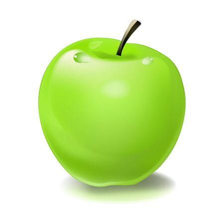 green apple  illustration object isolated color