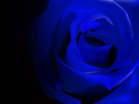Blauwe roos op zwarte vector illustratie