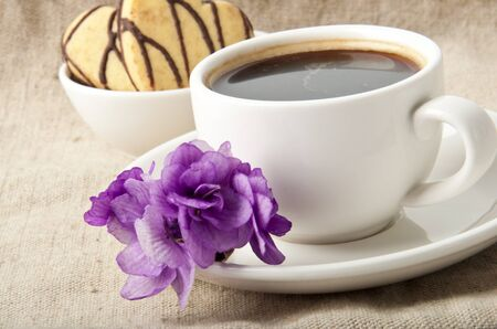 cup of coffee and cookies with chocolate and violet photo