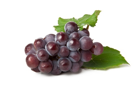 cluster of blue grape isolated on white background photo
