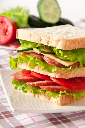 Fresh and tasty sandwich on a white plate photo