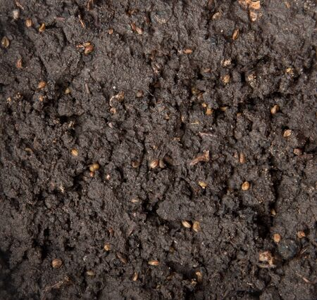 Soil background photo