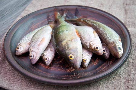 raw fish: raw fish in an old ceramic plate Stock Photo