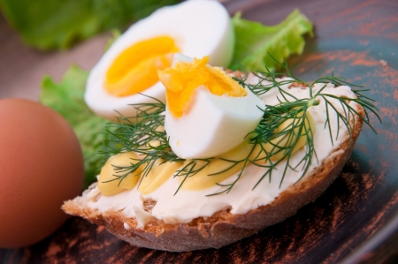 breakfast food: Slice of bread with mustard and cheese sauce and egg