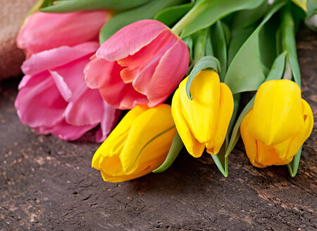 Bouquet of tulips on old wooden background photo