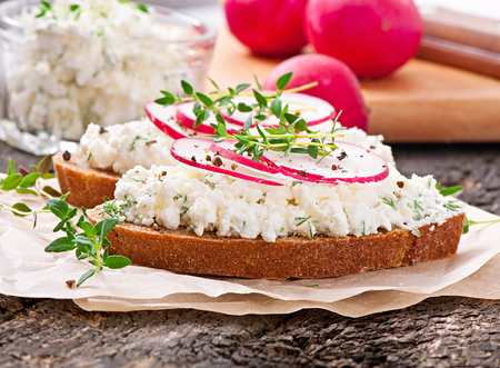 Sandwich with cottage cheese, radish, black pepper and thyme photo