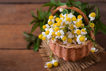 durability: Bouquet of daisies in a basket on a wooden background