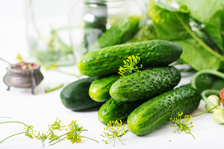 marinated gherkins: Preparation pickled marinated cucumbers, herbs and salt.