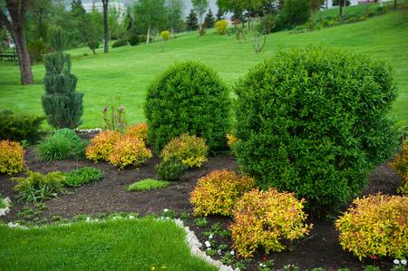 갓 이스트 잔디와 평화로운 정원입니다.