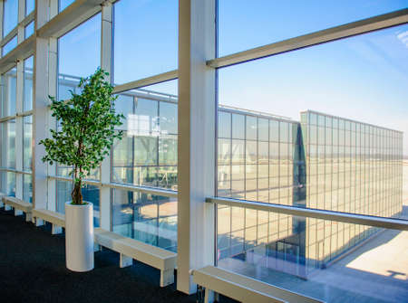 growing inside: Large windows overlooking the Donetsk airport, a tree growing inside the office